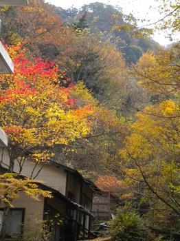 岩屋館 景観2.jpg